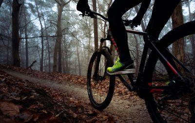 mountainbiken in de bossen